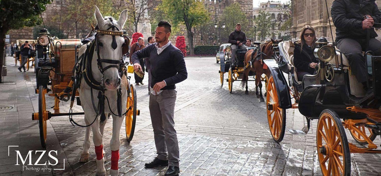 Andalusia Tour - Ilimtour European Muslim Travels