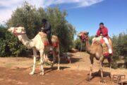 Morocco & Spain Tour - Halal Travels - Muslim Travelers - Ilimtour
