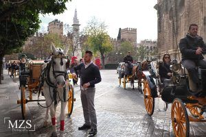 Sevilla Muslim Tour - Ilimtour Travels